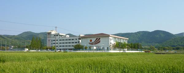 toyozenkei02